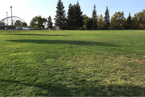 ses95677_field 3
