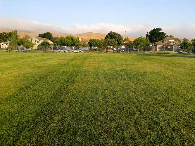 ches94534_field_practice_2.1