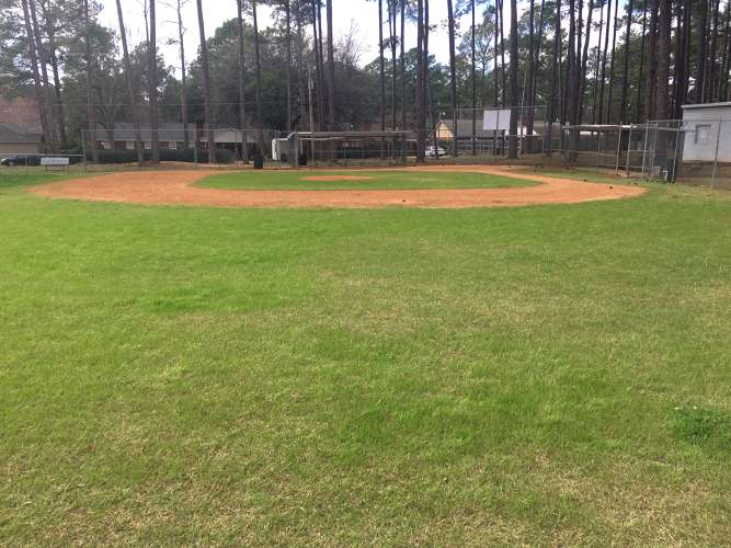 lpes31707_field_baseball_1.1