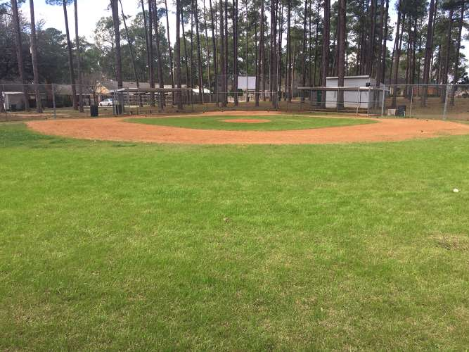lpes31707_field_baseball_1.2