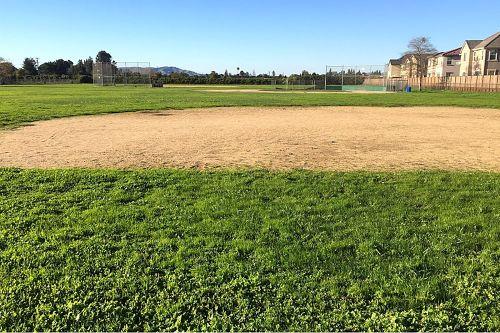 cchs93955_practice_field_2