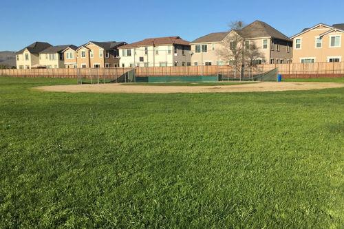 cchs_baseball_field_1