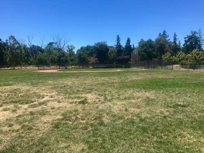 oe95116_Field_Field-Baseball_1.1