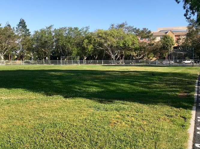 bca95110_field_field-practice_1.5