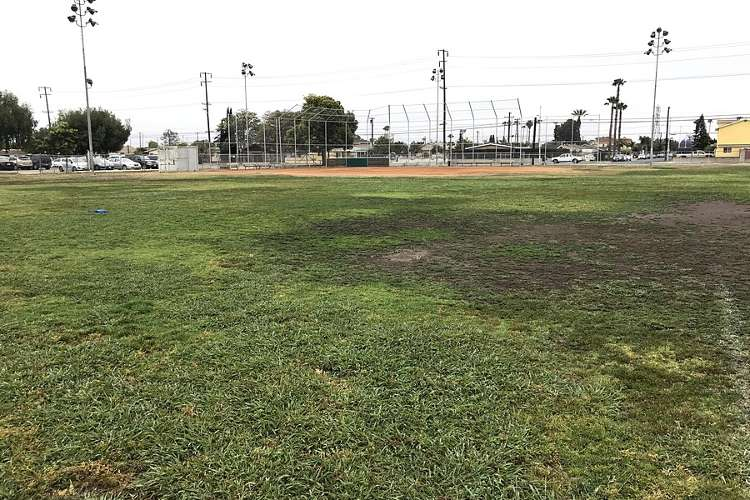 des92655_field_softball_1.2