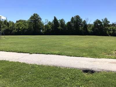 Grassy Field - East
