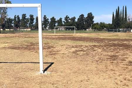 Field - Soccer