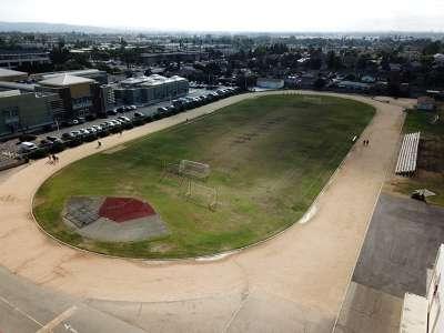 Field - Track / Grass