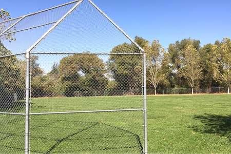Baseball/Softball/Soccer